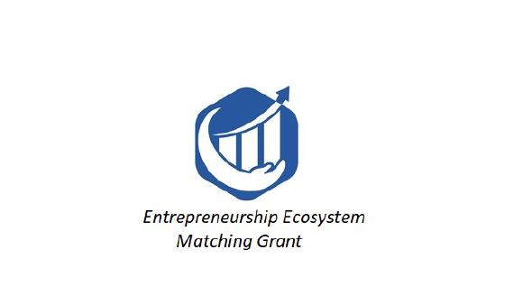 Entrepreneurship Ecosystem Matching (EE-MG) Cycle 1 – 2020